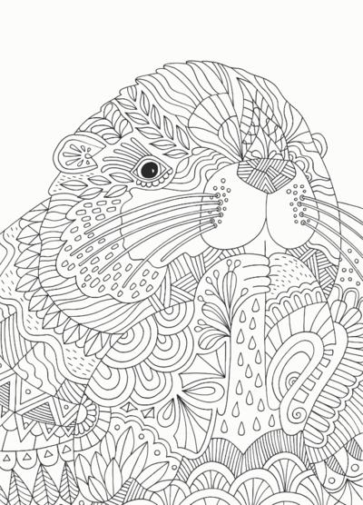 beaver-png