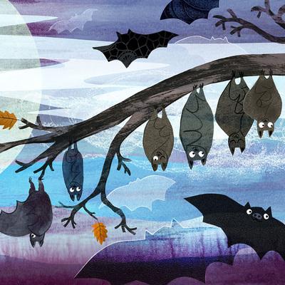 bats-hanging-jorooks1-sq-jpg