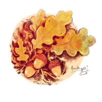 acorns-jpg-1