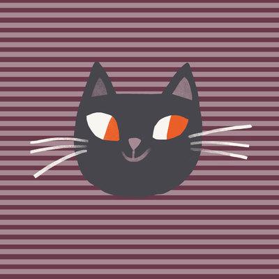 haba-hall-cat-jpg